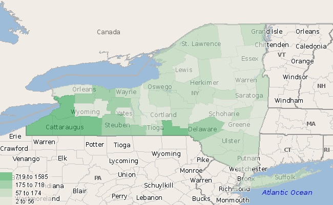 Fracking in New York: How Many Gas Extraction Jobs Are There
